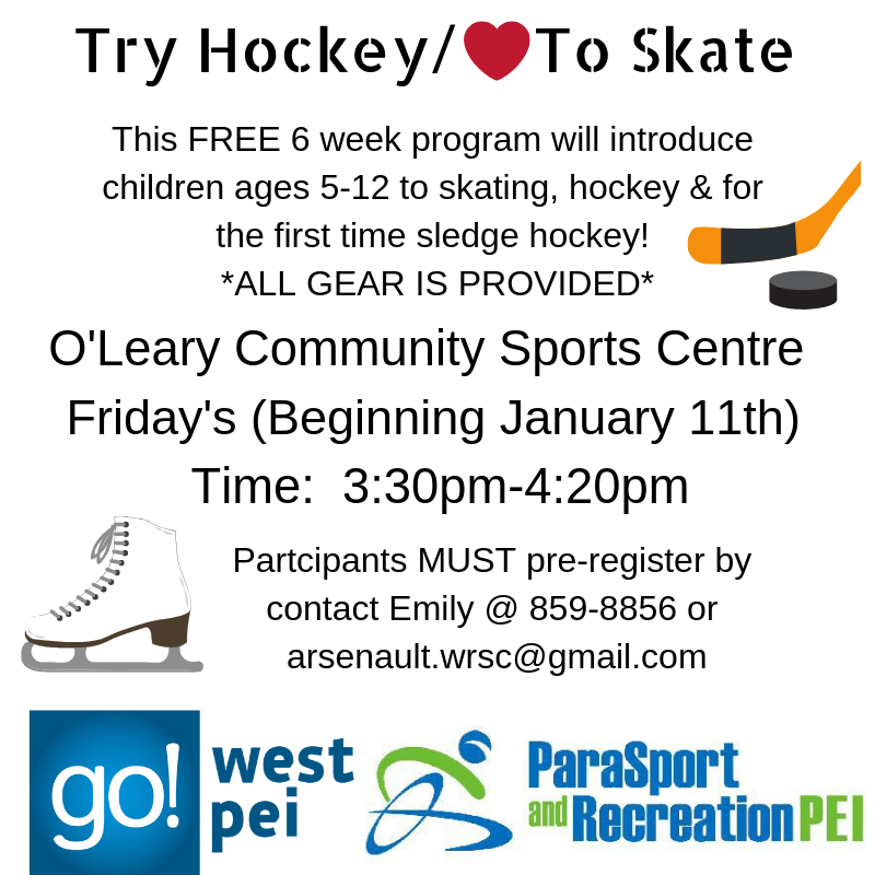 Try Hockey Program